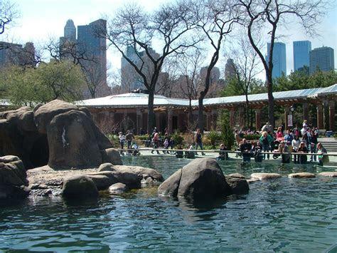 central park zoo  york nen gallery