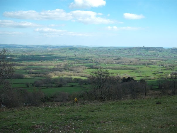 View from the top of Lambert's Castle over the Marshwood Vale