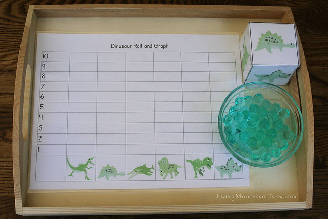 Dinosaur Roll and Graph Tray