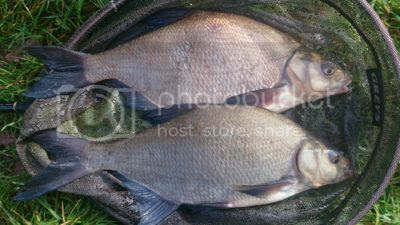photo MidNov_20143_zpsaec3d891.jpg