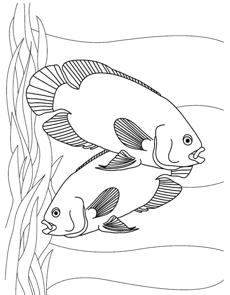 Aquarium Coloring Pages For Kids at GetColorings.com ...