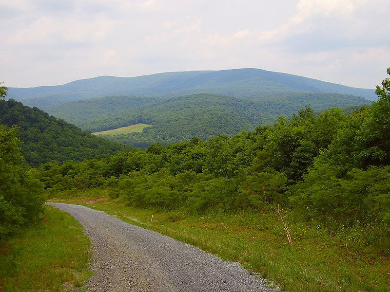 File:Mountain road 5.jpg
