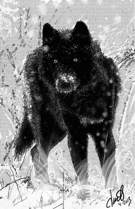black swamp pack images  pinterest wolves