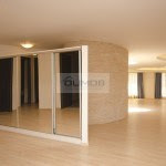 3Nordului penthouse 7Vanzare _800x551