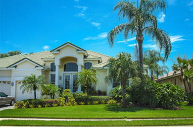 St Petersburg Landscape Design Tampa And Clearwater Landscaping