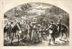 Escaping Slaves Picture
