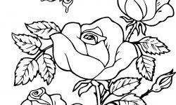 Eşsiz Gül Kelebek çiçek Boyama Sayfası