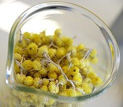 oleolito Helichrysum