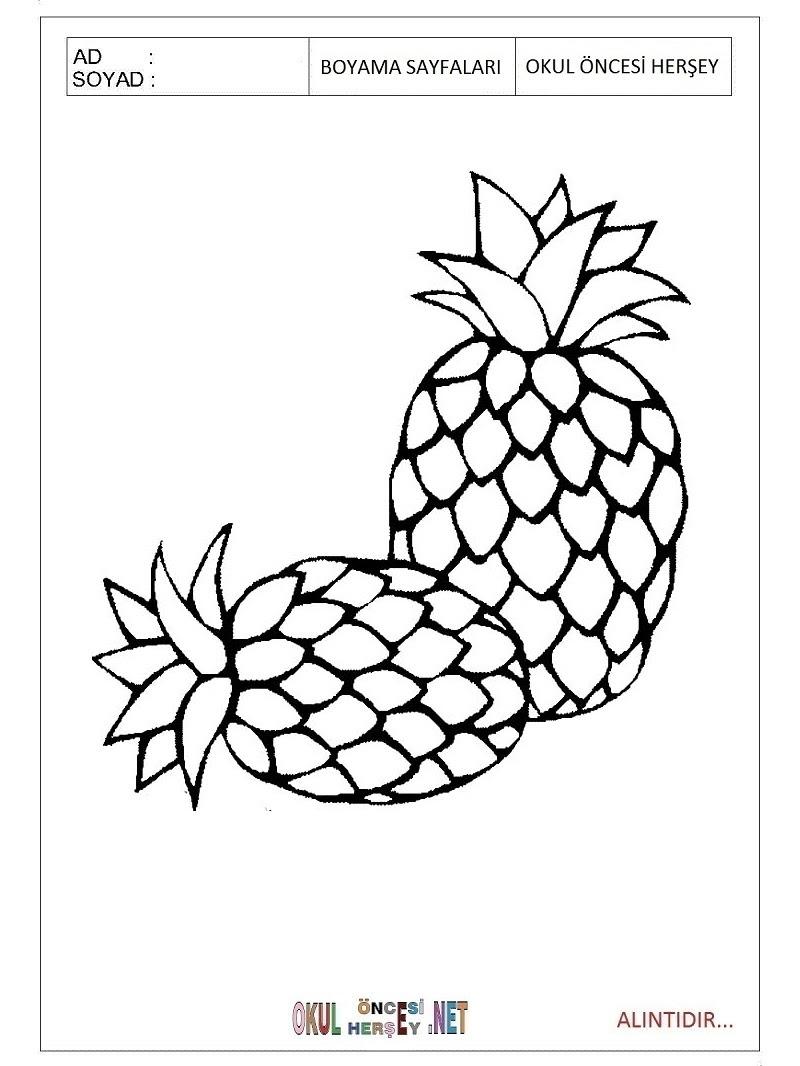 Ananas Boyama Sayfaları