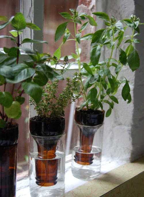 13 Ways To Reuse Wine Bottles In Your Garden - Home and ...