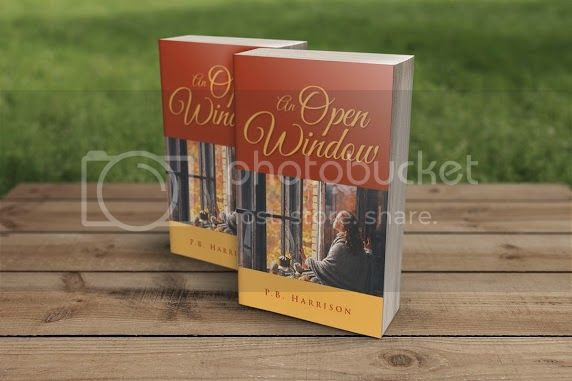 photo An Open Window - Book Blitz_zpsmjsetepu.jpg