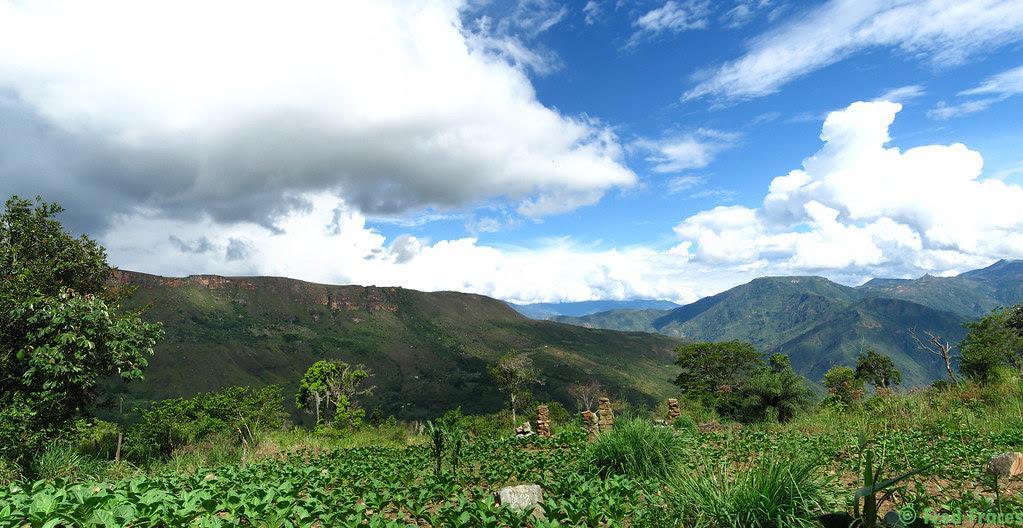 Panorama plantacion de tabaco, Mesa de los Santos, Colombia