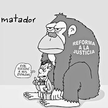Matador-Reforma a la justicia