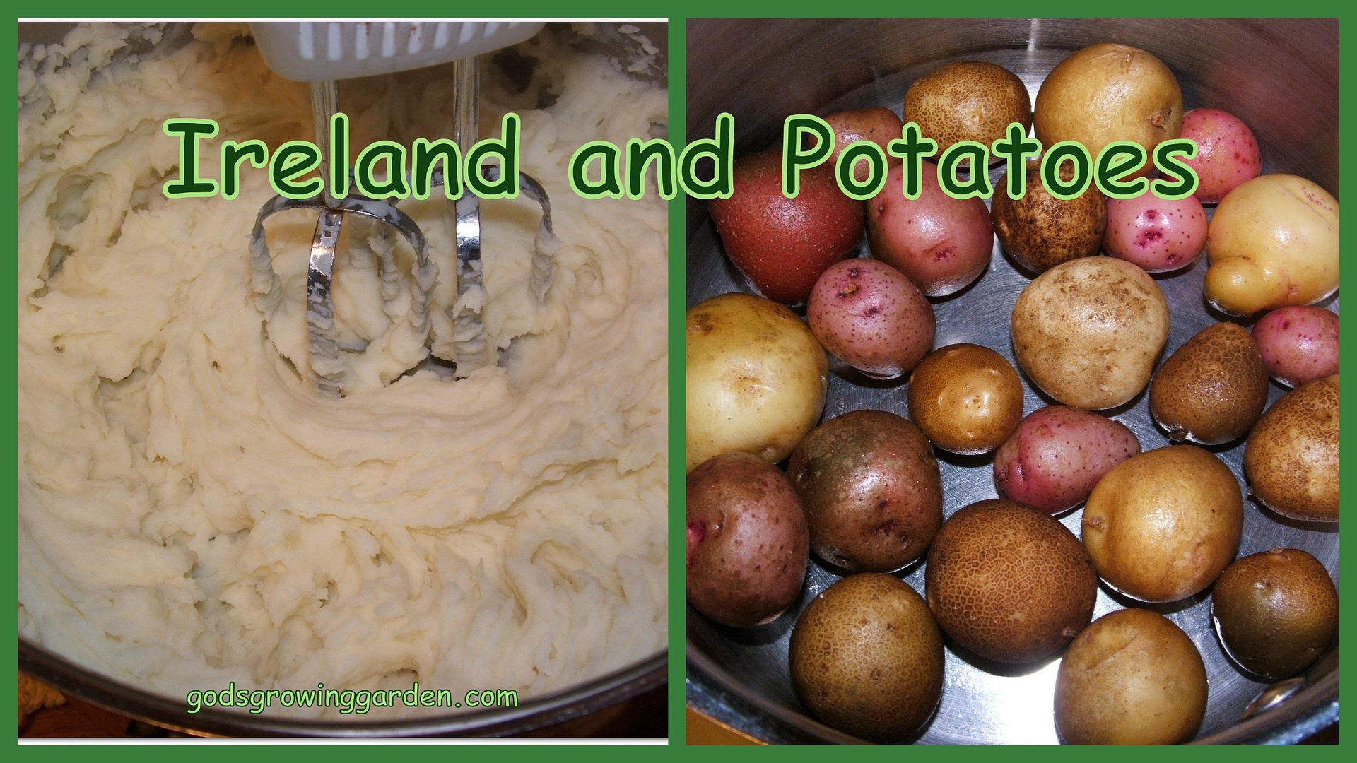 Ireland & Potatoes by Angie Ouellette-Tower for godsgrowinggarden.com photo 2013-10-13_zps707a1500.jpg