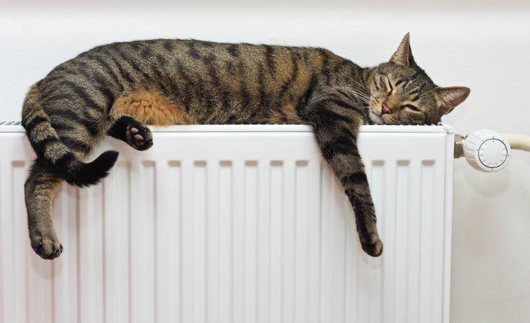 Great heating-grant-feat. 770 x 470 · 58 kB · jpeg