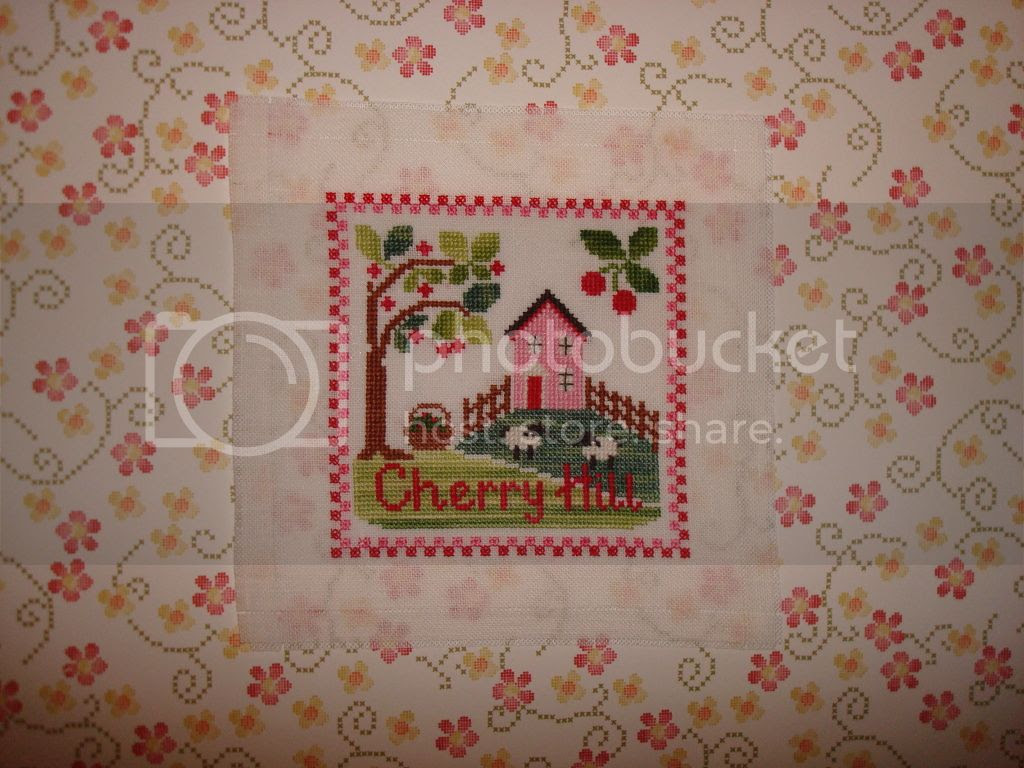 DSC03339 CCN Cherry Hill_zps8dbb6da7.jpg CCN Cherry Hill