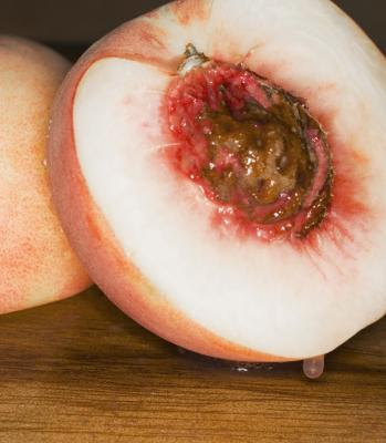 How to Prepare Peach Seeds for Planting   Home Guides   SF ...