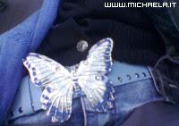 Cintura farfallosa