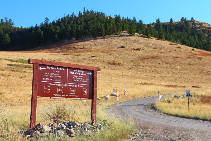 IMG_3869 Red Sleep Mountain Drive, National Bison Range