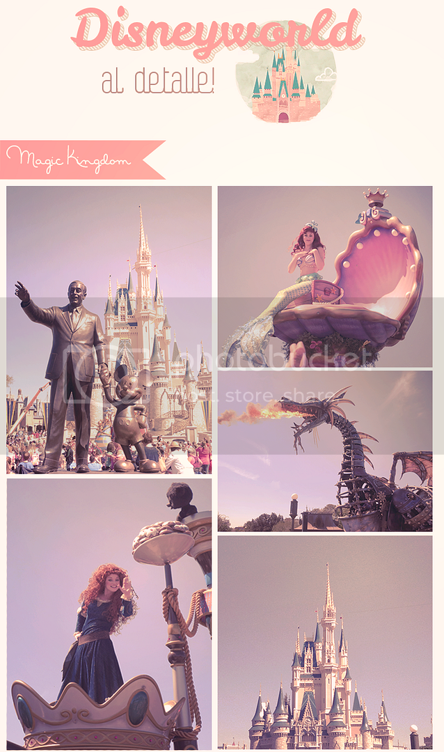 photo disneyworld_magickingdom_zps1dd392df.png