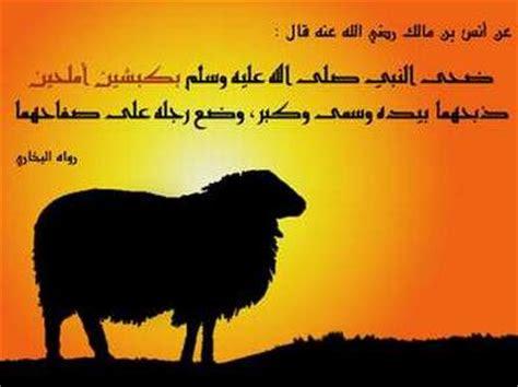 hukum seputar hadyu  udhiyah kurban ukhuwahislamiahcom