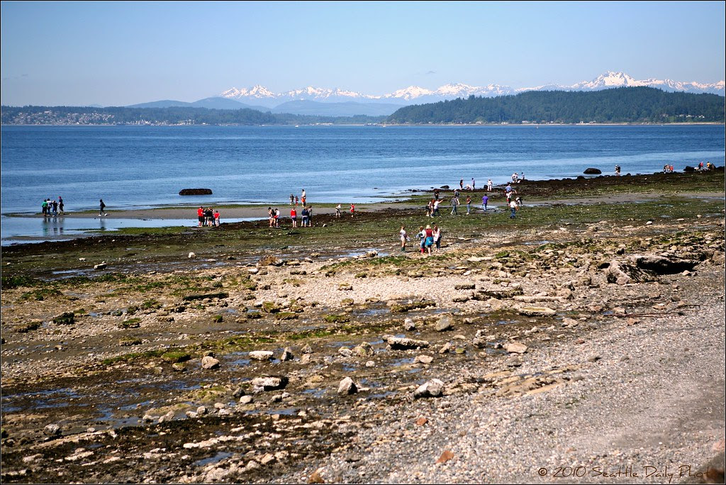 Lowest Tides of the Year This Weekend