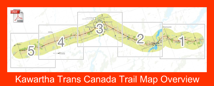 Image result for images trans canada trail lindsay