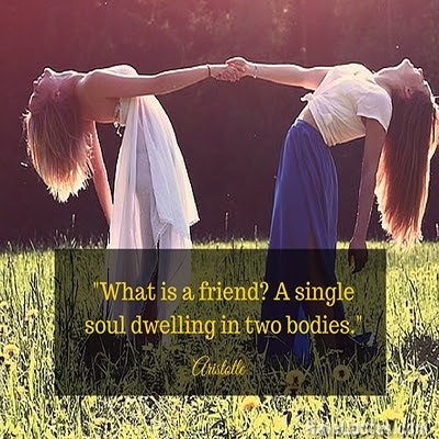 What Is A Friend A Single Soul Dwelling In Two Bodies Quote Life