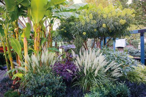 A Dazzling Portland Garden with Tropical Flair   Portland
