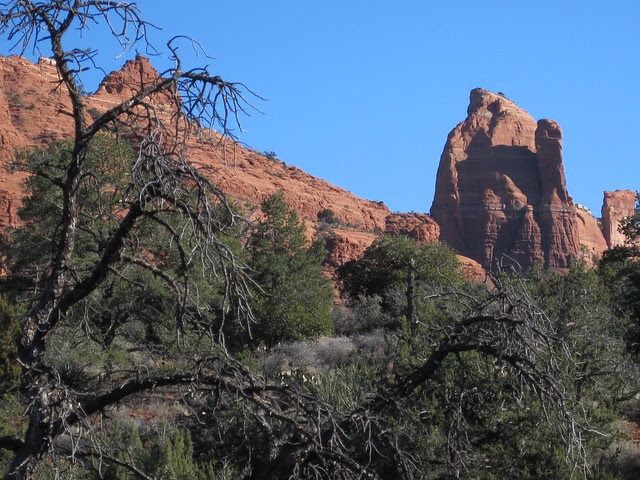 On the Huckaby trail