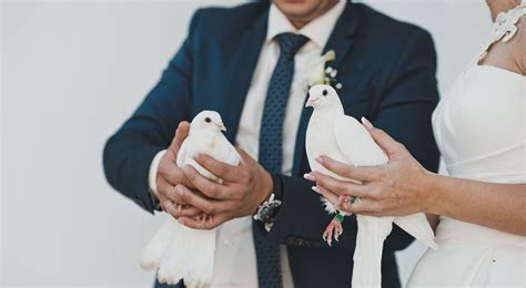 Weddings ? White Dove Release