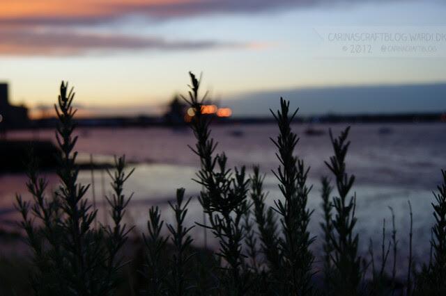 Sunrise, December 7, 2012 - 6
