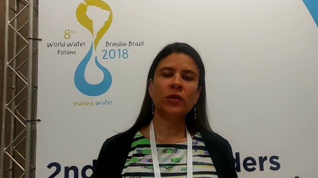 Fabiola Tábora, the executive secretary of the Global Water Partnership (GWP) office in Central America, takes part in one of the preparatory meetings for the World Water Forum, which will be held in Brasilia in March 2018. Credit: GWP Central America