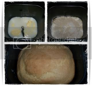 Pão de Sanduiche MFP2