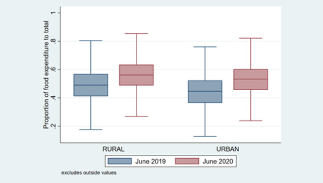 Share of food to total expenditures between June 2019 and June 2020. Illustration by Anirudh Tagat