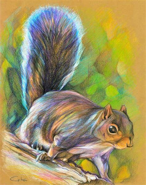 squirrel mike lurking original color pencil drawing