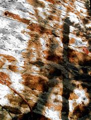 mur, 10 octobre 2005