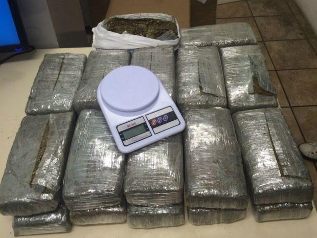 24 quilos de maconha foram apreendidos nesta sexta-feira (20), em Salvador. (Foto: Divulgação/ Polícia Civil)