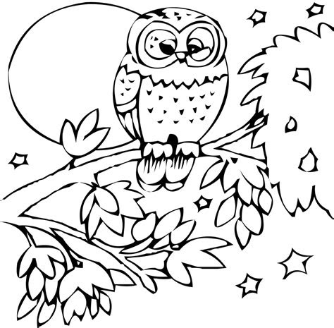 zoo animals coloring pages coloringsuitecom