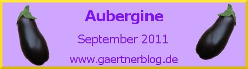 Garten-Koch-Event September 2011: Aubergine [30.09.2011]