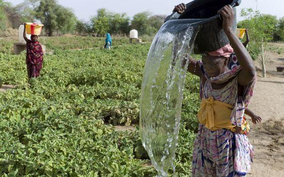 Unas mujeres cargan agua en Mauritania