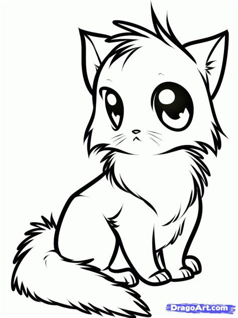 pin  rachael  fox  coloring pages   cat