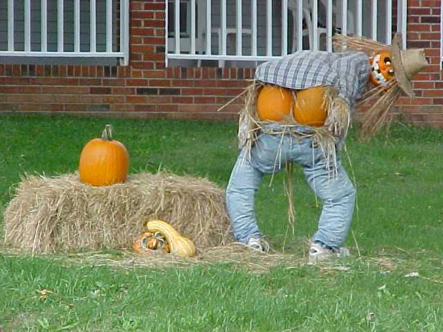 Outstanding Funny Halloween Decorations 640 x 480 · 44 kB · jpeg