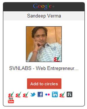 Widget do Google+ no Wordpress (Foto: Reprodução/Teresa Furtado)