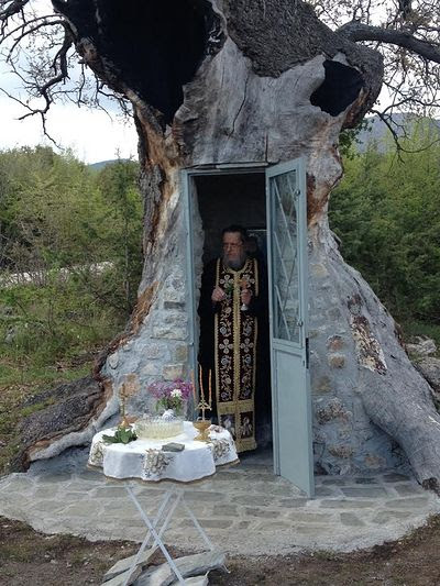 Οταν η πίστη κάνει θαύματα -Το συγκλονιστικό παρεκκλήσι προς τιμήν του Αγίου Παϊσίου στο εσωτερικό μιας βελανιδιάς και ο ρωσικός ορθόδοξος ναός «Ιγκλού» - Εικόνα0