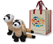 Black-footed plush and gift bag