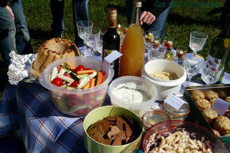 picnic_sal__7