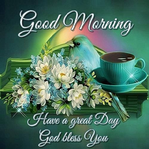Good Morning Have A Great Day God Bless Pictures Photos And Images