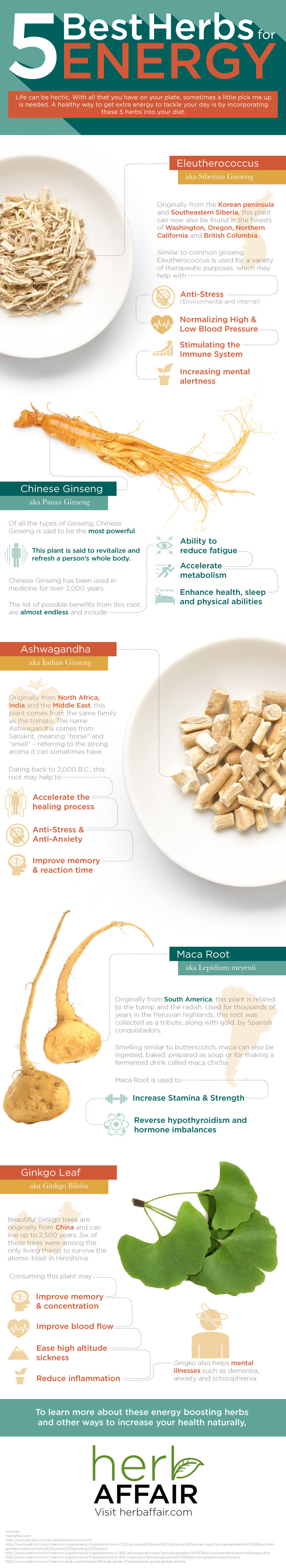 Infographic: 5 Best Herbs For Energy