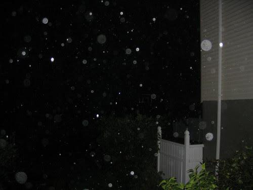 The backyard, during the hurricane